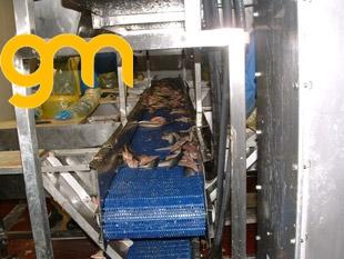 Băng tải lưới inox chuyển cá sống