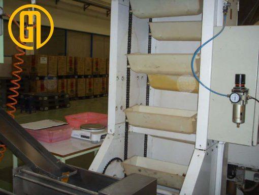 hệ thống băng chuyền gầu